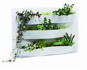 Tableau Végétal Mural : tableau mural paris c t jardin ~ Premium-room.com Idées de Décoration