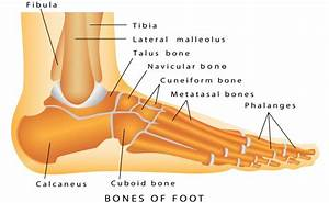 Top 5 Broken Foot Symptoms