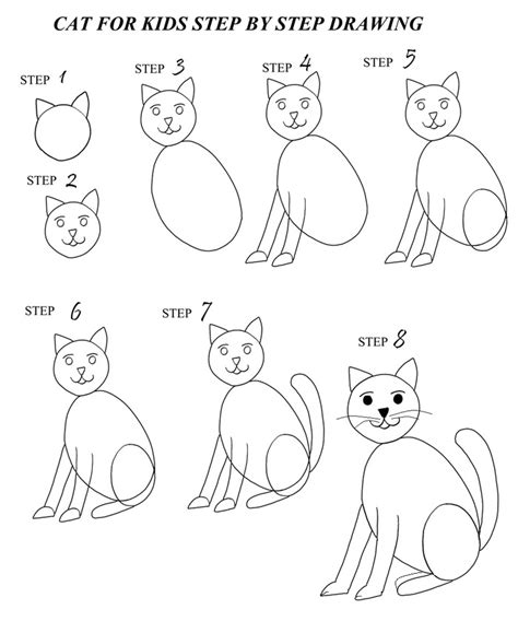 draw  cat step  step  pictures coolbkids