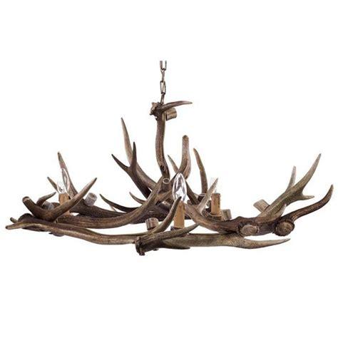 when do deer shed their antlers uk 17 best images about deer heads on deer deer