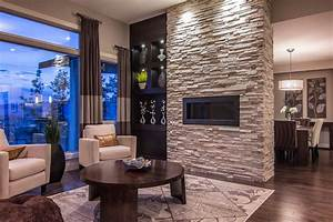 Summit at selkirk contemporary living room other for Houzz living room designs