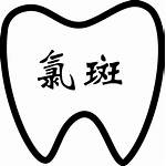 Chlorine Tooth Svg Spot Icon Onlinewebfonts