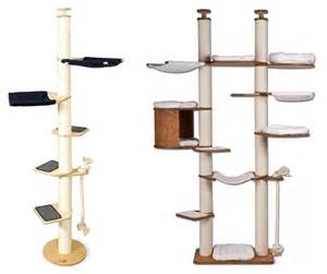 cat climbing tower amazing inspiration from germany simple cat