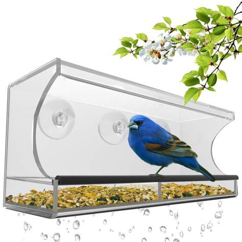 window bird feeder adding a window bird feeder to your home squirrel proof