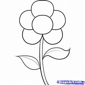 How to Draw an Easy Flower, Step by Step, Flowers, Pop ...