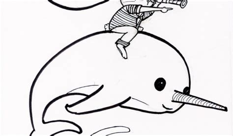 narwhal coloring pages kids printable trk