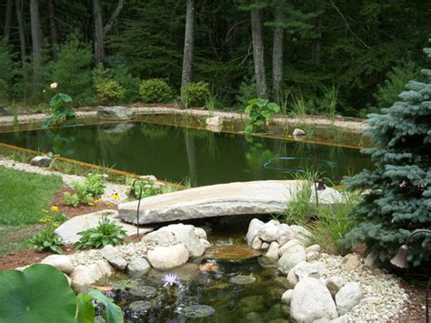 9 Myths About Organic Bio Swimming Pond In The Garden