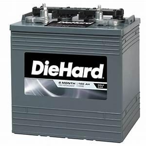 Diehard Golf Cart Battery