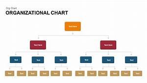 Organizational Chart Powerpoint Template  U0026 Keynote Slide