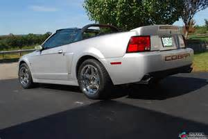 Cobra Rims submited images