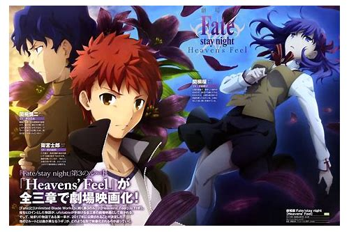 fate stay night visual novel download and english patch