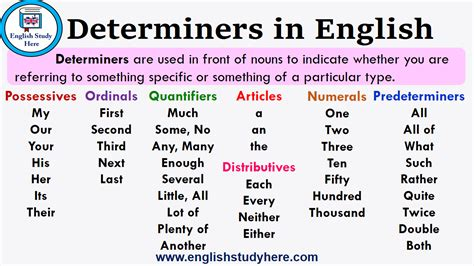 determiners  english english study