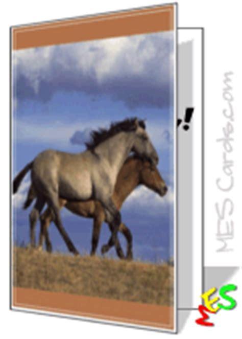 card maker horse   pasture