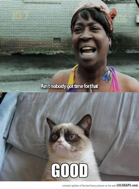 Meme Mashup - meme mashup memes pinterest meme and lol