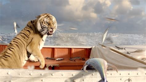 Boys In The Boat Movie by A Boy A Boat A Tiger Reflecting On Life Of Pi Npr