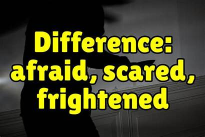Scared Afraid Frightened Difference Between English