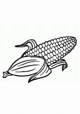 Coloring Corn Printable sketch template