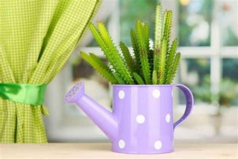 jenis tanaman hias manfaatnya gardeningid