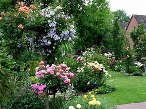 Shop Mein Schoener Garten De : rosenbogen fr hling bis herbst 2008 rosen und mehr mein sch ner garten online rosen und ~ Orissabook.com Haus und Dekorationen