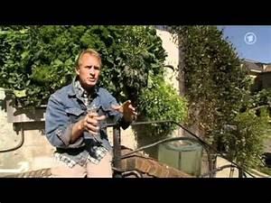 Vertikale Gärten Selber Machen : vertikaler garten selbstgemacht doovi ~ Bigdaddyawards.com Haus und Dekorationen