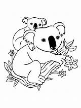 Koala Coloring Pages Baby Printable Mother sketch template
