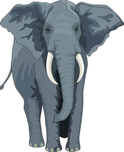 elephant silhouette front walking elephant front view clip at clker vector