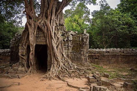Temple Running Through Angkor Wat Cambodia Travel