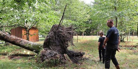 chambre d h e bayonne bassin d arcachon au barp l arbre s affale sur le toit