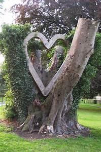 Arbre En Bois Deco : arbre mort bois flott et souche d 39 arbre pour d corer le ~ Premium-room.com Idées de Décoration