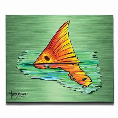 Redfish Canvas Fish Reverie Paintings Saltwater Drawings