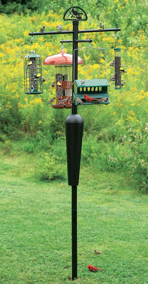 719 best birdhouses bird baths bird feeders images on