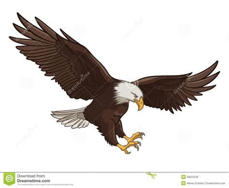 Clip Eagle Bald Eagle Clipart Swooping Pencil And In Color Bald