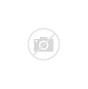 REAL MADRID C F   SKYW...