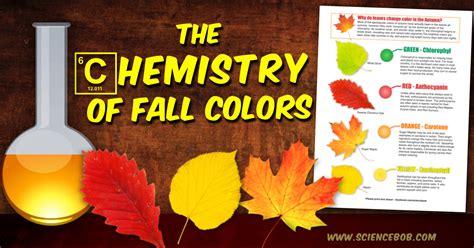 leaves change color   fall sciencebobcom