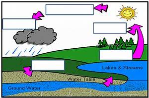 Water Cycle Unlabeled