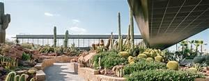 Garten Landschaft : stachelige spezialit t garten landschaft ~ Buech-reservation.com Haus und Dekorationen