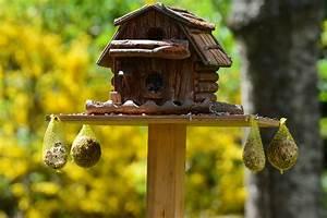 Futter Für Wildvögel Selber Machen : gartendeko selber machen tipps und ideen garten mix ~ Michelbontemps.com Haus und Dekorationen