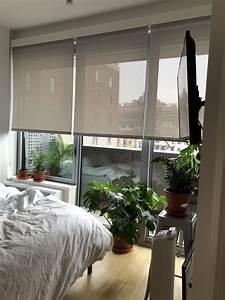 A, Boho, Minimalist, Plant, Lady, U2019s, Brooklyn, Rental