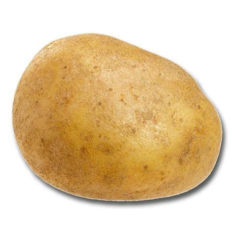pomme de terre recettes 4 saisons
