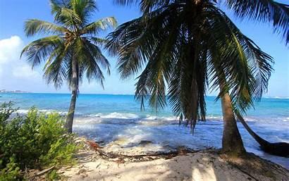 Colombia San Andres Kolumbien Waves Palms Nature