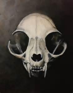 cat skull 25 best ideas about cat skull on cat skull