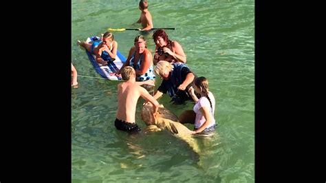 grouper catch goliath pier naples