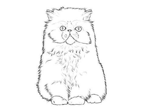 kostenlose malvorlage katzen katzenrassen perserkatze