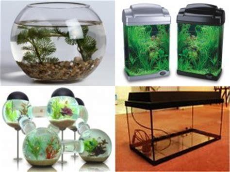 aquarium shapes  sizes  aquarium ideas