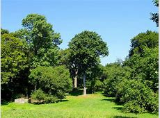 List of botanical gardens and arboretums in Massachusetts