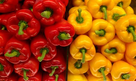 sweet pepper image gallery sweet peppers