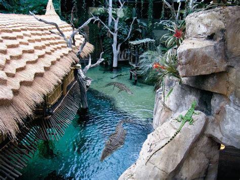 hagenbeck hamburg tierpark tropen aquarium krokodil hagenbecks ausflugsziele zoo attraktionen funke cities cool ticket das highlights ontour tourispo park eismeer