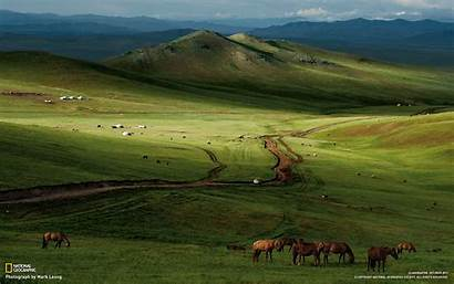 Mongolian Steppe Geographic National Horses Wallpapers Mongolia