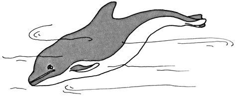Skeeter Bass Boat Porpoising skeeter 20i porpoising page 2