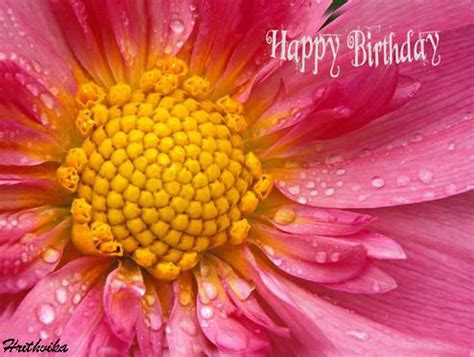 floral birthday   flowers ecards greeting cards